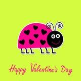 Śliczna kreskówki różowej damy pluskwa z kropkami w kształcie h Zdjęcie Stock