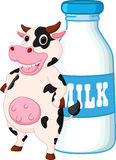 Śliczna krowy kreskówka z dojną butelką Zdjęcie Royalty Free