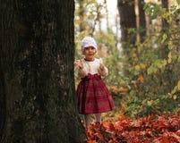 Śliczna mała dziewczynka bawić się z liśćmi wewnątrz outdoors obraz royalty free