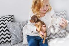 Śliczna mała dziewczynka bawić się z małym psem i miękka część bawimy się obrazy stock