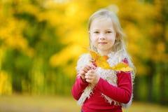 Śliczna mała dziewczynka ma zabawę na pięknym jesień dniu Zdjęcia Royalty Free