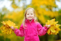 Śliczna mała dziewczynka ma zabawę na pięknym jesień dniu Szczęśliwy dziecko bawić się w jesień parku Dzieciaka zgromadzenia spad Obraz Royalty Free
