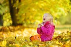 Śliczna mała dziewczynka ma zabawę na pięknym jesień dniu Szczęśliwy dziecko bawić się w jesień parku Dzieciaka zgromadzenia spad Fotografia Royalty Free