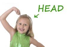Śliczna mała dziewczynka wskazuje jej głowę w częściach ciała uczy się angielszczyzn słowa przy szkołą Fotografia Royalty Free
