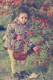 Śliczna mała dziewczynka zbiera dzikie jagody w drewnach Obraz Stock