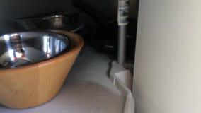 Śliczna mała figlarka odkrywał dosypianie w niecki spiżarni zbiory wideo