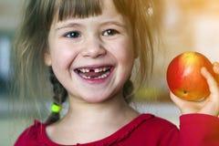 Śliczna mała kędzierzawa bezzębna dziewczyna uśmiecha się czerwonego jabłka i trzyma Portret szczęśliwy dziecko je czerwonego jab zdjęcia stock