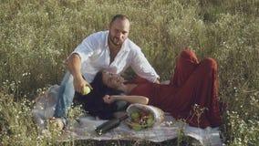 Śliczna miłości para relaksuje na szkockiej kracie przy polem i mężczyzna je jabłka zbiory wideo
