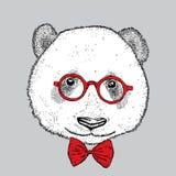 Śliczna panda z szkłami i krawatem również zwrócić corel ilustracji wektora ilustracja wektor