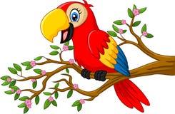 Śliczna papuga na gałąź royalty ilustracja