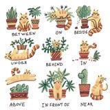 Śliczna ręka rysujący kota charakter w różnych pozach z roślina garnkiem Prepozycje miejsce angielszczyzny j?zyka obcy studiowani royalty ilustracja