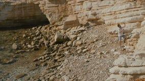 Śliczna samiec opowiada na telefonie blisko skały w Cypr zbiory