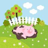 Śliczna smilling wektorowa świnia na rolnym polu Zdjęcia Stock