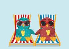 Śliczna sowa w okularach przeciwsłonecznych na urlopowym lying on the beach i relaksować na słońcu ilustracji