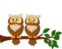 Śliczna sowy pary kreskówka Obraz Stock