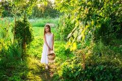 Śliczna uśmiechnięta mała dziewczynka trzyma kosz z owoc i warzywo obraz stock
