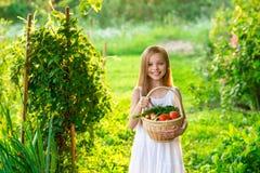 Śliczna uśmiechnięta mała dziewczynka trzyma kosz z owoc i warzywo zdjęcia stock