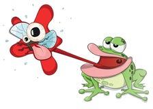 Śliczna wektorowa żaby łasowania i polowania muszka Fotografia Royalty Free