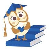 Śliczna wektorowa mądrze sowa z kapeluszem Ilustracja dla dyplomu dziecinów absolwenci Obrazy Royalty Free