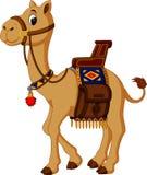 Śliczna wielbłądzia kreskówka Obraz Royalty Free