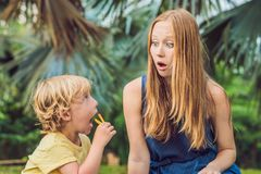 Śliczna zdrowa preschool dzieciaka chłopiec je francuskich dłoniaków grule z ketchupem z jego mamą dziecko je niezdrowego jedzeni Fotografia Stock