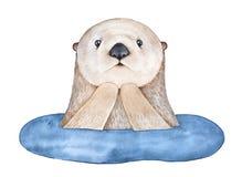 Śliczna zdziwiona Denna wydra, wyłania się od wody royalty ilustracja