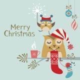 śliczne Boże Narodzenie sowy Zdjęcie Royalty Free
