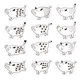 Śliczne dzikie świnie, knury ilustracyjni Zdjęcia Stock