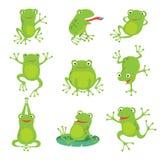 Śliczne kreskówek żaby Zielony kumka kumak na lotosie opuszcza w stawie Wektorowi zwierzęcy charaktery ustawiający ilustracja wektor