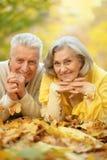 śliczne par starsze osoby Obrazy Stock