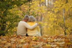 śliczne par starsze osoby Zdjęcie Stock