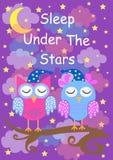 Śliczne sowy śpią pod gwiazdami, dobranoc karta również zwrócić corel ilustracji wektora ilustracja wektor