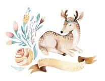 Ślicznego dziecka jelenia zwierzęca pepiniera odizolowywał ilustrację dla dzieci Akwareli boho kreskówki lasowy urodziny patry Obraz Royalty Free