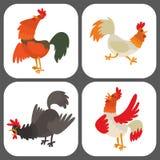Ślicznego kreskówka koguta kurczaka wektorowy ilustracyjny zwierzęta gospodarskie royalty ilustracja