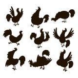 Ślicznego kreskówka koguta sylwetki kurczaka zwierzęta gospodarskie wektorowego ilustracyjnego rolnictwa domowy ptasi charakter Zdjęcia Royalty Free