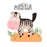 Ślicznej kreskówki zebry wektorowa ilustracja Śliczny safari zwierzę - mała zebry kreskówki ilustracja z safari trawą Obraz Royalty Free
