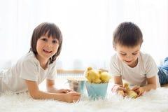 Śliczni małe dzieci, chłopiec bracia, bawić się z kaczątka sprin fotografia stock