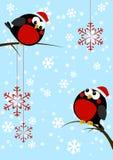 Śliczni mali ptaki z Bożenarodzeniowymi płatkami śniegu ilustracja wektor