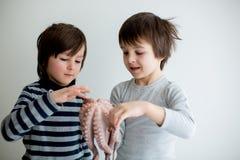 Śliczni preschool dzieci, chłopiec bracia, trzyma surowej ośmiornicy zdjęcia stock