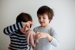 Śliczni preschool dzieci, chłopiec bracia, trzyma surowej ośmiornicy zdjęcie royalty free