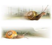 Śliczni ruchów ślimaczki Fotografia Royalty Free