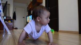 Śliczni siedem miesięcy starego chłopiec uczenie czołgania, dolly za strzale zdjęcie wideo
