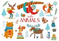 Śliczni zim dzikie zwierzęta i kwieciści elementy Pomysły dla pocztówek i plakatów ściągania ilustracj wizerunek przygotowywający ilustracji