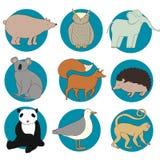 Śliczni zwierzęta Obraz Royalty Free
