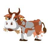 Śliczny łaciasty krowy chrupania siano, postać z kreskówki Zdjęcie Stock