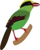 Śliczny błonie zieleni sroki wektor ilustracja wektor