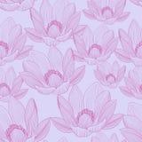 Śliczny bezszwowy wzór z różowymi lotosowymi kwiatami Wodnych leluj tapety Fotografia Stock