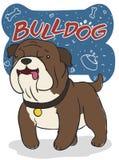 Śliczny buldog z Doodles w kości ` s znaku, Wektorowa ilustracja ilustracji