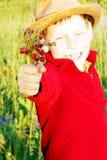 śliczny chłopiec pole daje uśmiechnięte truskawki Fotografia Royalty Free