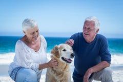 Śliczny dorośleć pary migdali ich psa obraz royalty free